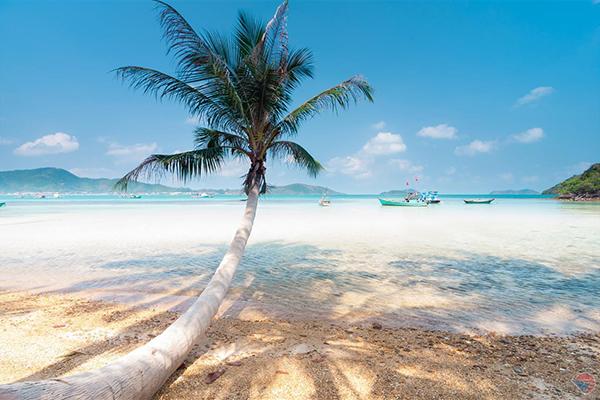 Bãi biển hoang sơ đầy nắng gió
